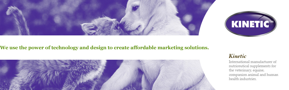 We use the power of technology and design to create affordable marketing solutions. Kinetic
